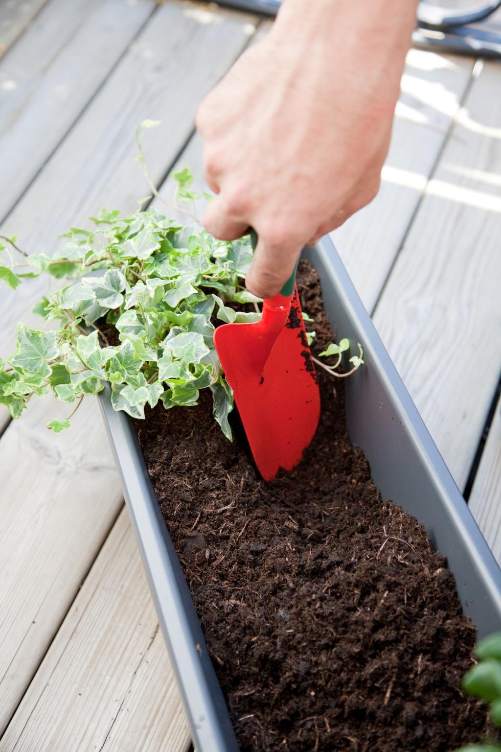Composer une jardinière pour le balcon