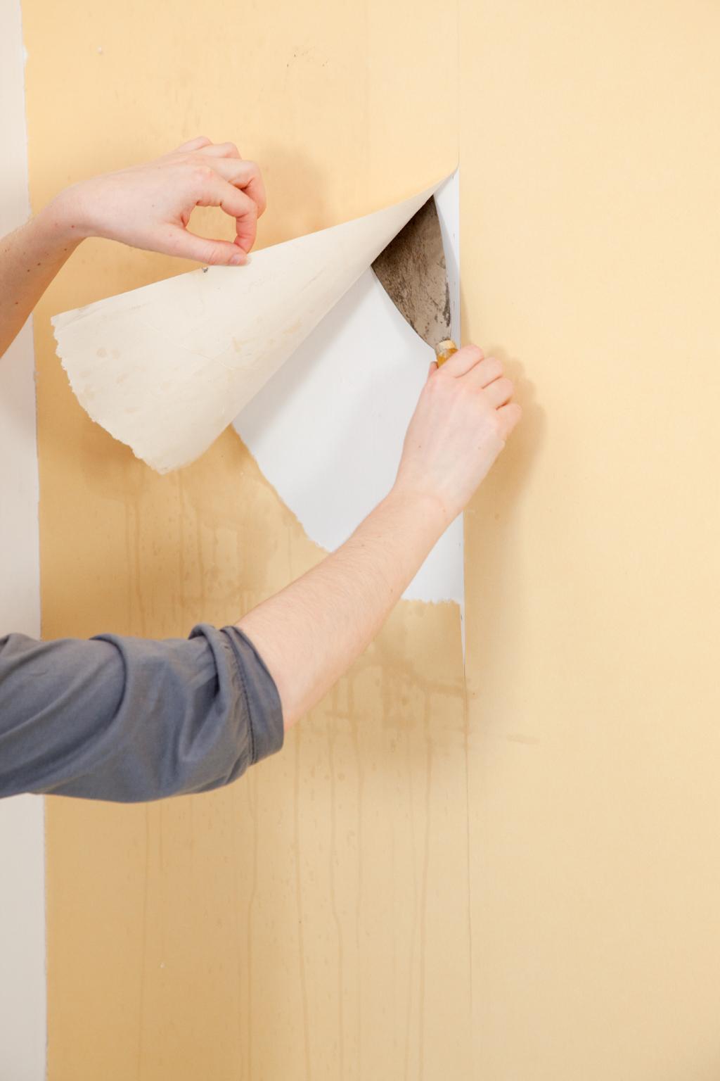 Spatule Décoller Papier Peint décoller du papier peint avec une décolleuse | diy family