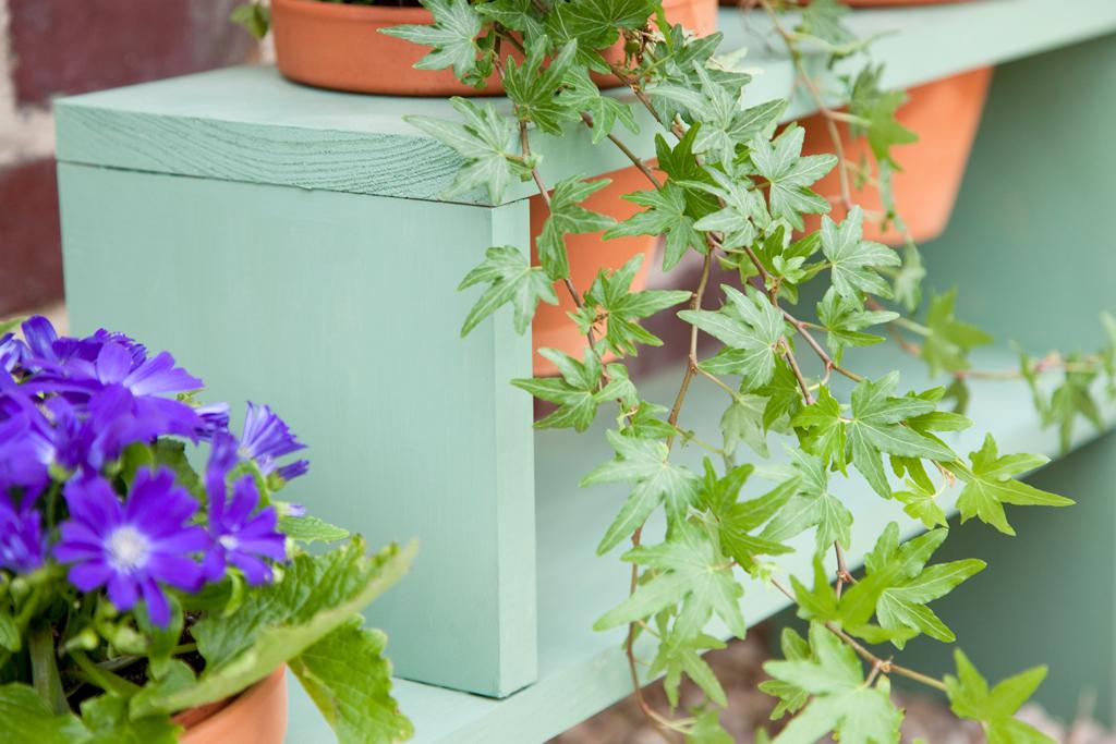 Monter une etagere pour plantes