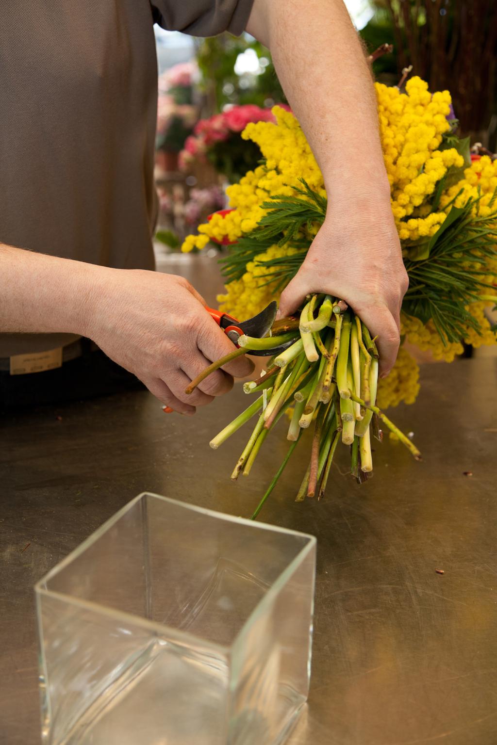 Composer un bouquet de fleurs d'hiver