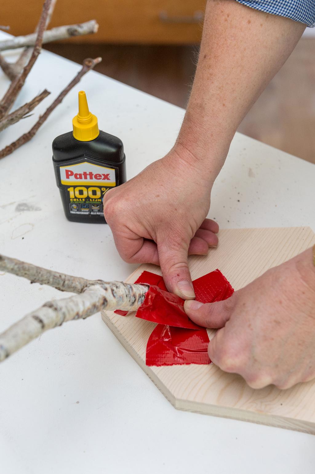 Fabriquer un trophée de chasse décoratif