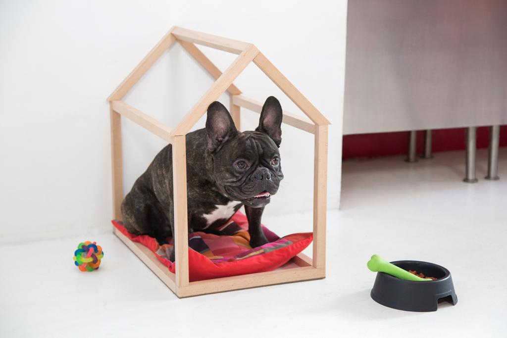 Fabriquer une niche d'interieur Doggy
